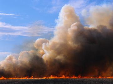 Пожежні ємності – надійний захист полів і лісів